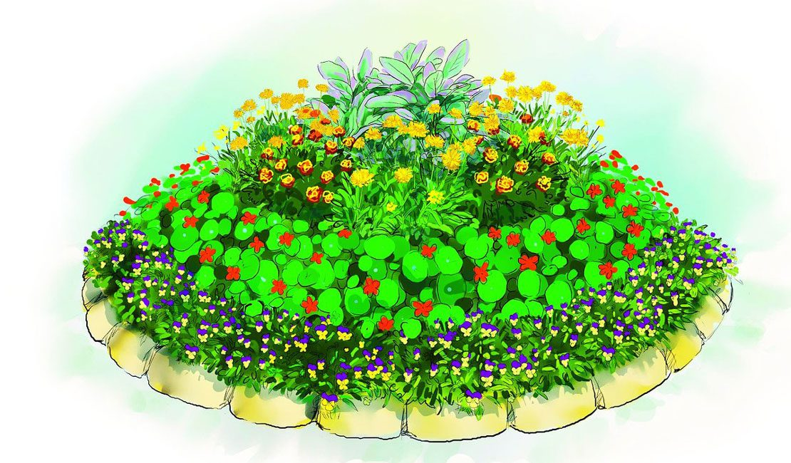 Загадки со цветочной грядки