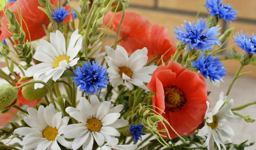 Загадки цветов
