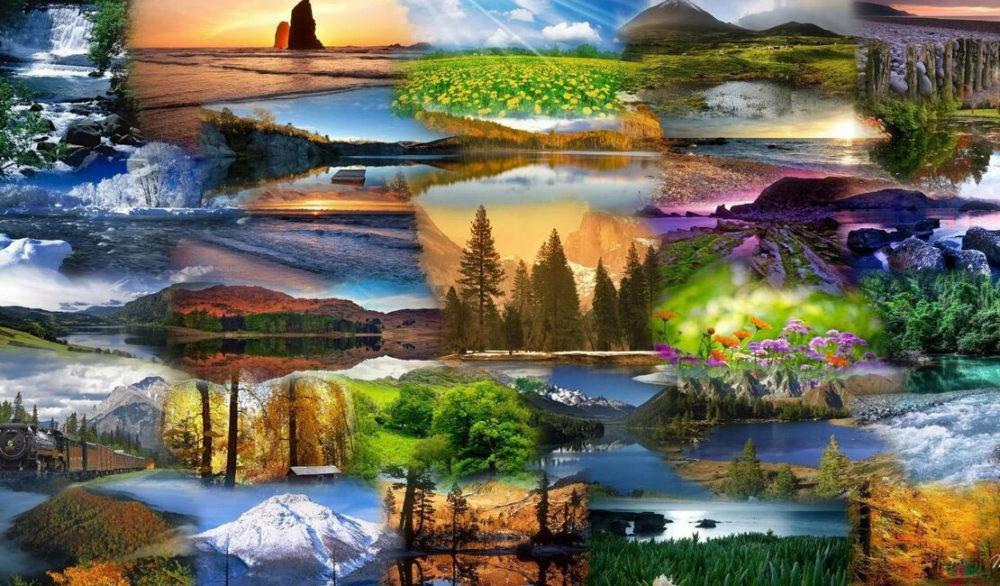 Чудеса и загадки природы
