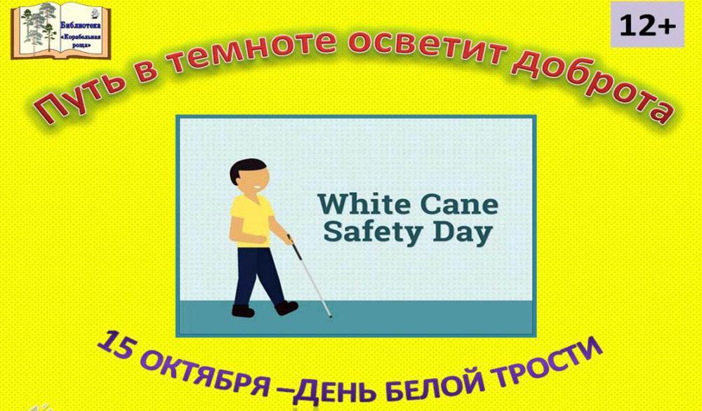 15 октября — Международный день белой трости